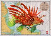 lion fish on chart